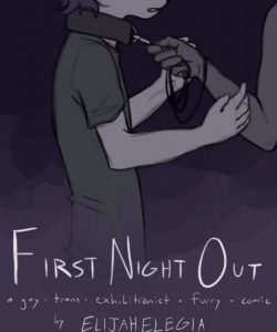 First Night Out 001 and Gay furries comics