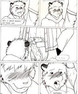 Rough Riders 010 and Gay furries comics
