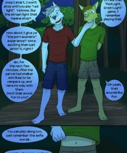 Roughin' It 030 and Gay furries comics