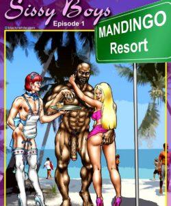 Sissy Boys 001 and Gay furries comics