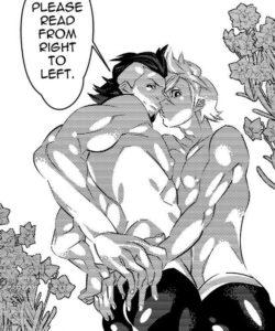 The Sleeping Prince 002 and Gay furries comics