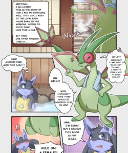 In The Bath House 001 and Gay furries comics