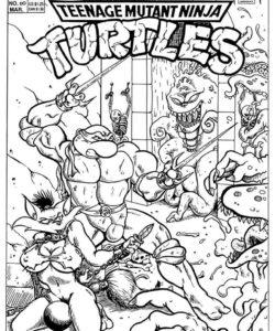 Teenage Mutant Ninja Turtles 001 and Gay furries comics