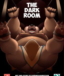 The Dark Room 001 and Gay furries comics